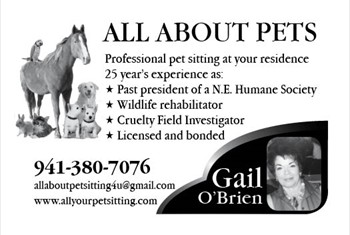 All About Pets borderless